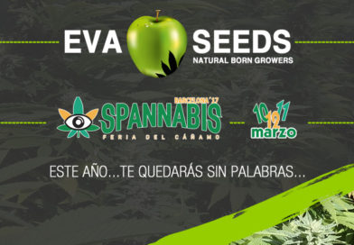 Eva Seeds, próximamente en Spannabis Barcelona