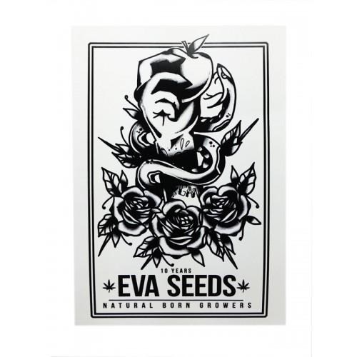 Adhesivo del 10 Aniversario Eva Seeds