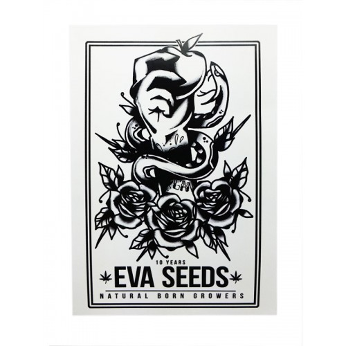 Eva Seeds 10 Anniversary Logo sticker