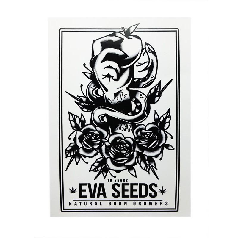 Adhesive 10 Jubiläums Eva Seeds Logo