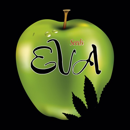 EVA SEEDS OFFICIAL LOGO STICKER