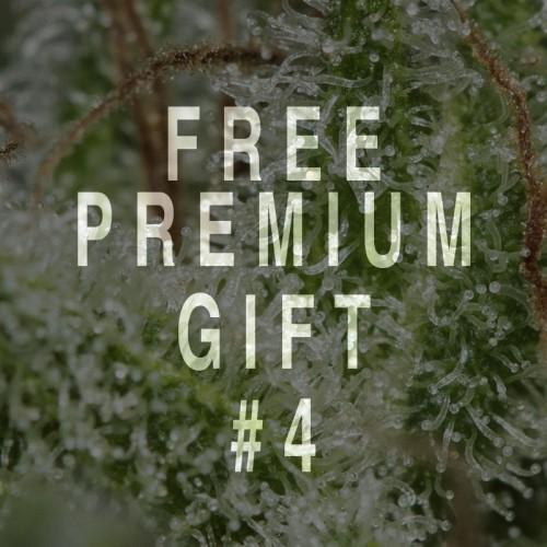 Pack Regalo Premium a partir 800€
