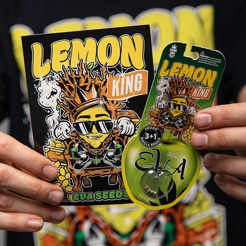 PACK LEMON KING LOVERS