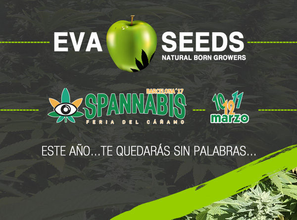 Eva Seeds en Spannabis 2017