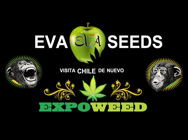 Eva Seeds en Expoweed Chile