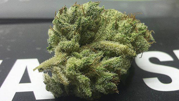Furious Candy dry bud
