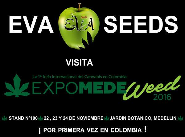Eva Seeds en Expomedeweed