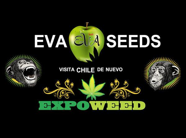 Eva Seeds en Expoweed Chile