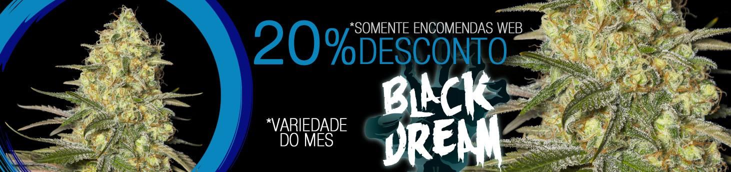 BLACK DREAM br