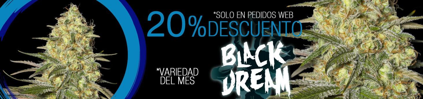 BLACK DREAM es